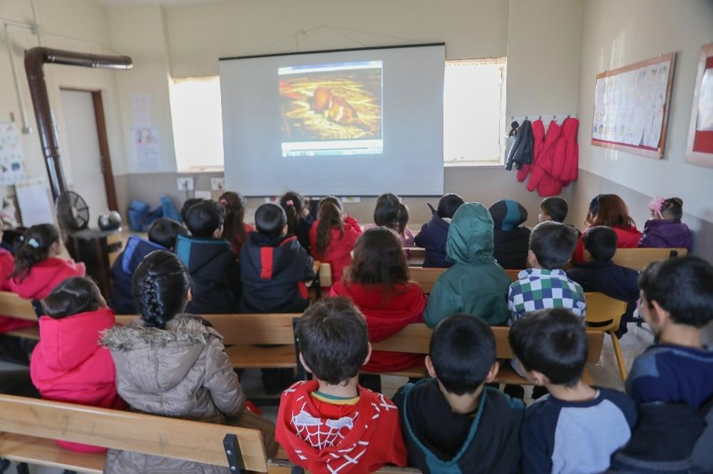 Kırsal mahallelerde sinema gösterimleri başladı